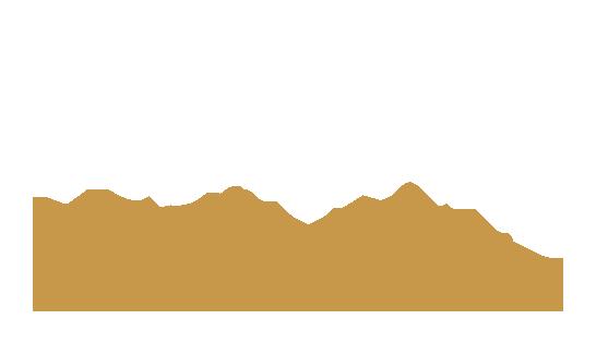 testo-banner